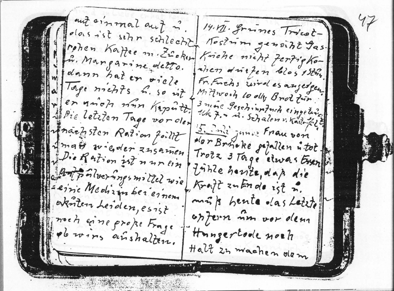 Hauser Diary